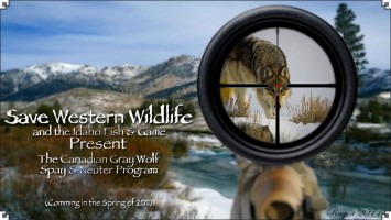 Cascadia wildlands david spady for Fish and game idaho