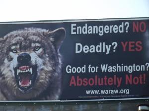 Wolf Billboard