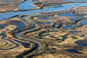 The 700,000-acre Copper River Delta is the largest contiguous wetland on the Pacific Coast of North America.