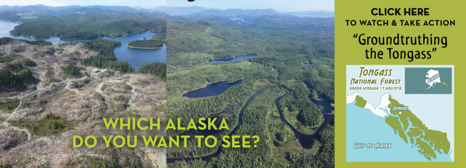 WATCH Groundtruthing the Tongass