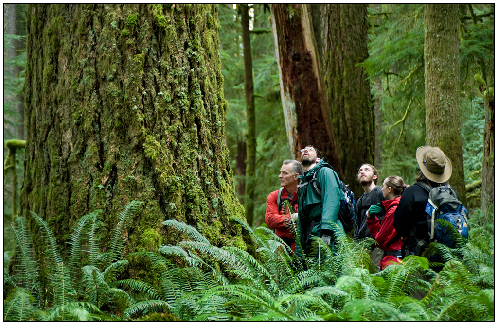 Community members explore the proposed Devil's Staircase Wilderness. Photo by Tim Giraudier.