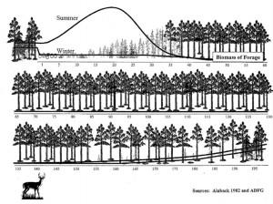 Black Tail Winter Habitat Graphic