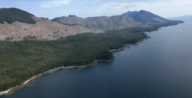 Whole mountains and valleys are being clearcut on Cleveland Peninsula.