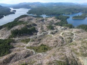 Alaska Mental Health Trust logging on Prince of Wales Island.