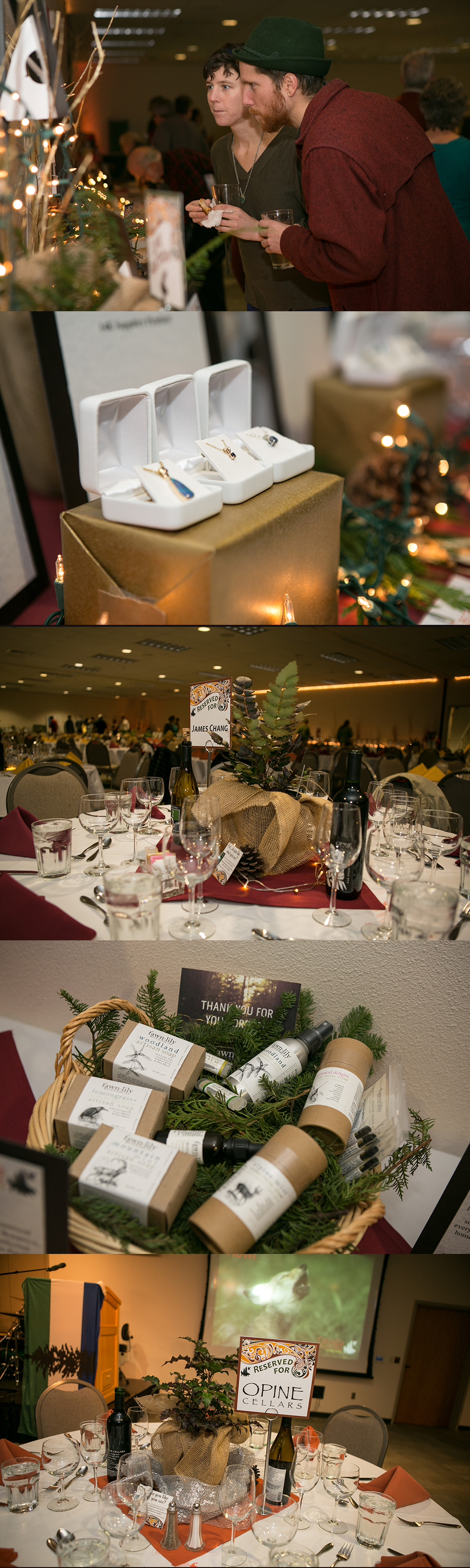 Photos from the 2015 Wonderland Auction (photos by Wendy Gregory Photography).