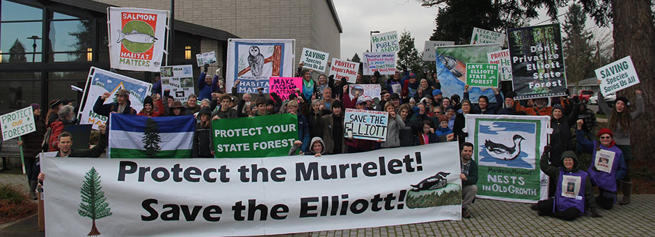 Oregonians turned out in force at the December State Land Board meeting (photo by Cascadia Wildlands)