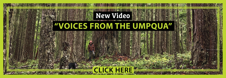 SLIDER_2020_Umpqua-Video_v3-03