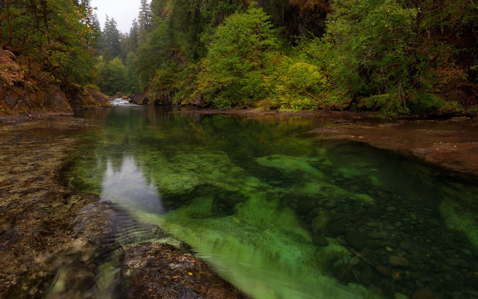 Saving Oregon's Famed Rivers and Wild Salmon from Gold Mining