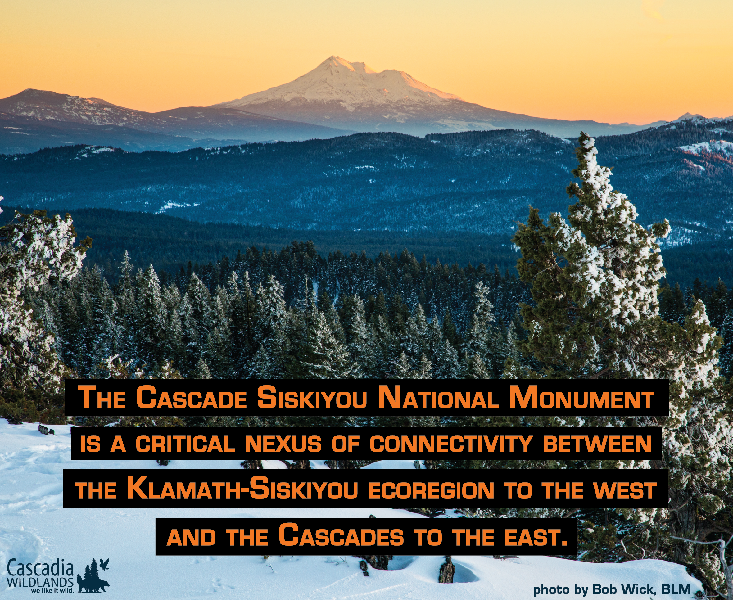 Take Action to Defend the Cascade-Siskiyou National Monument