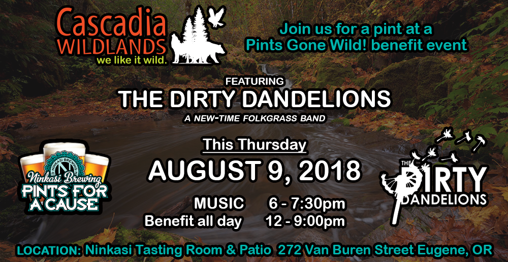 Join Us Thursday for Music & Beer! — August 9, 2018