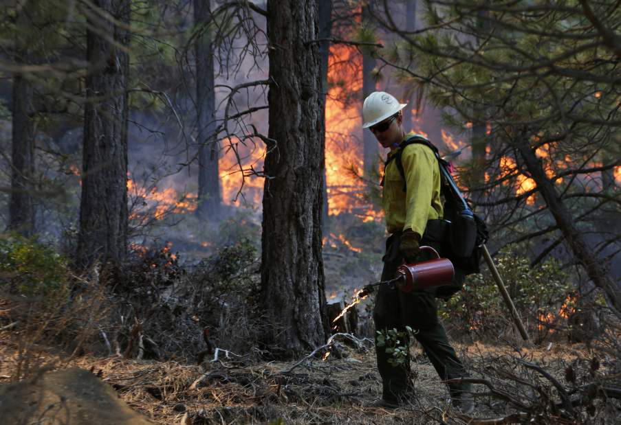 Tell Oregon Elected Officials: Wildfire Policy Should be Science-Based and Community Focused!