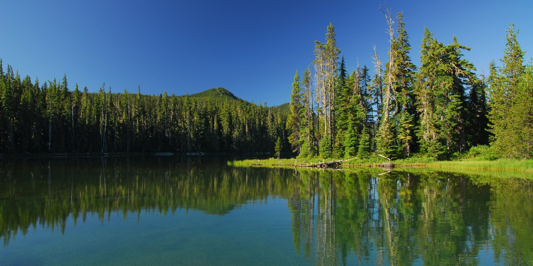 Stand Up for Waldo Lake – Take Action Today!
