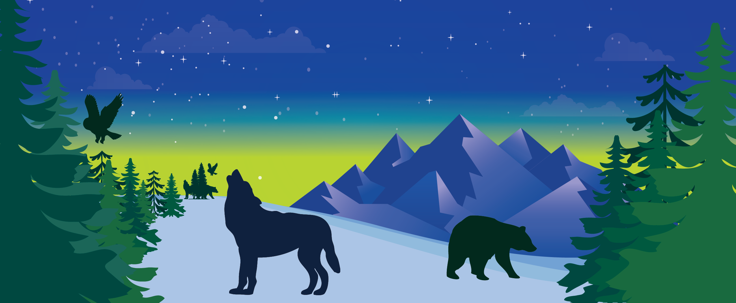 Join Cascadia Wildlands for the 17th Annual Wonderland Auction!