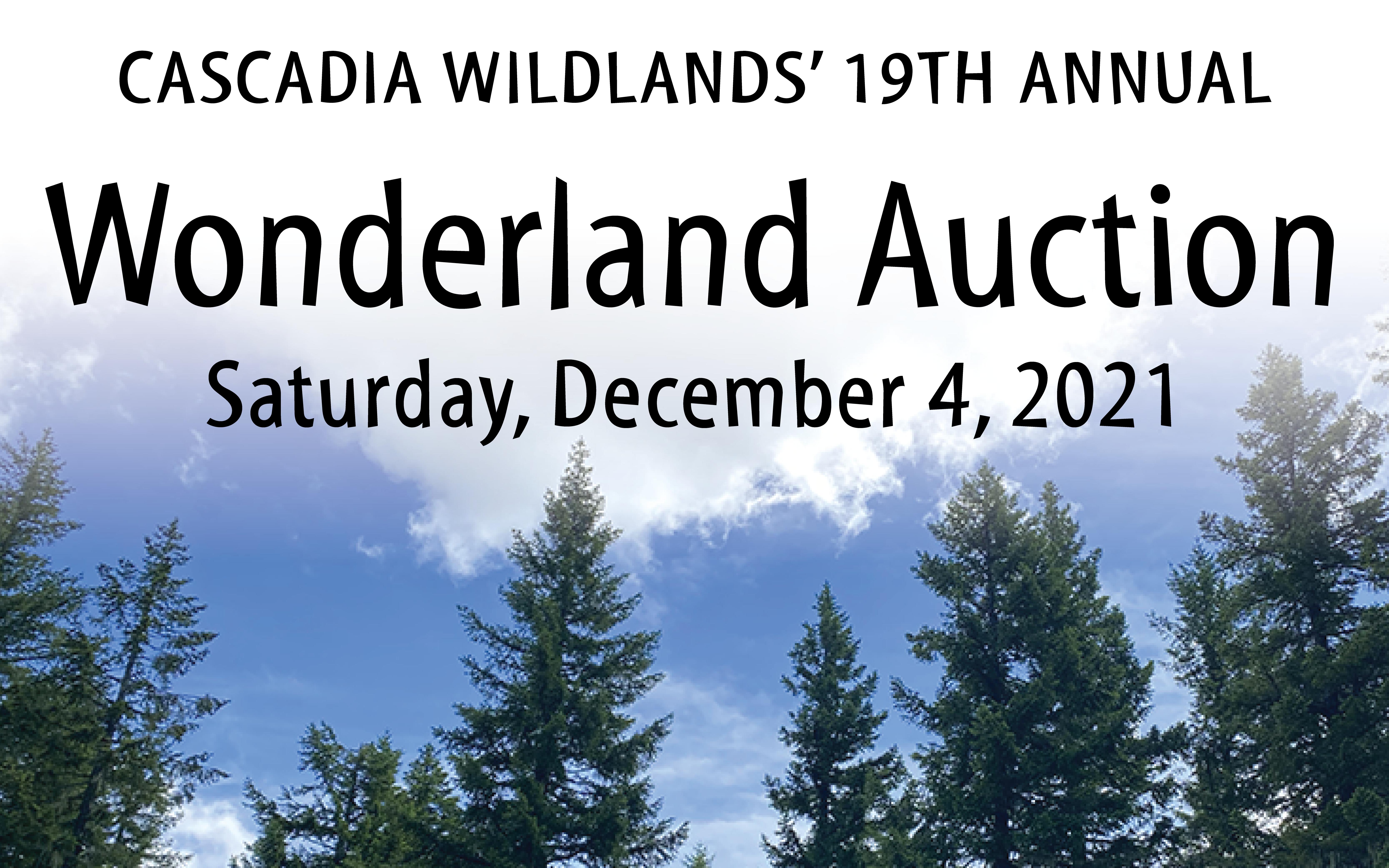 Wonderland Auction, 19th Annual