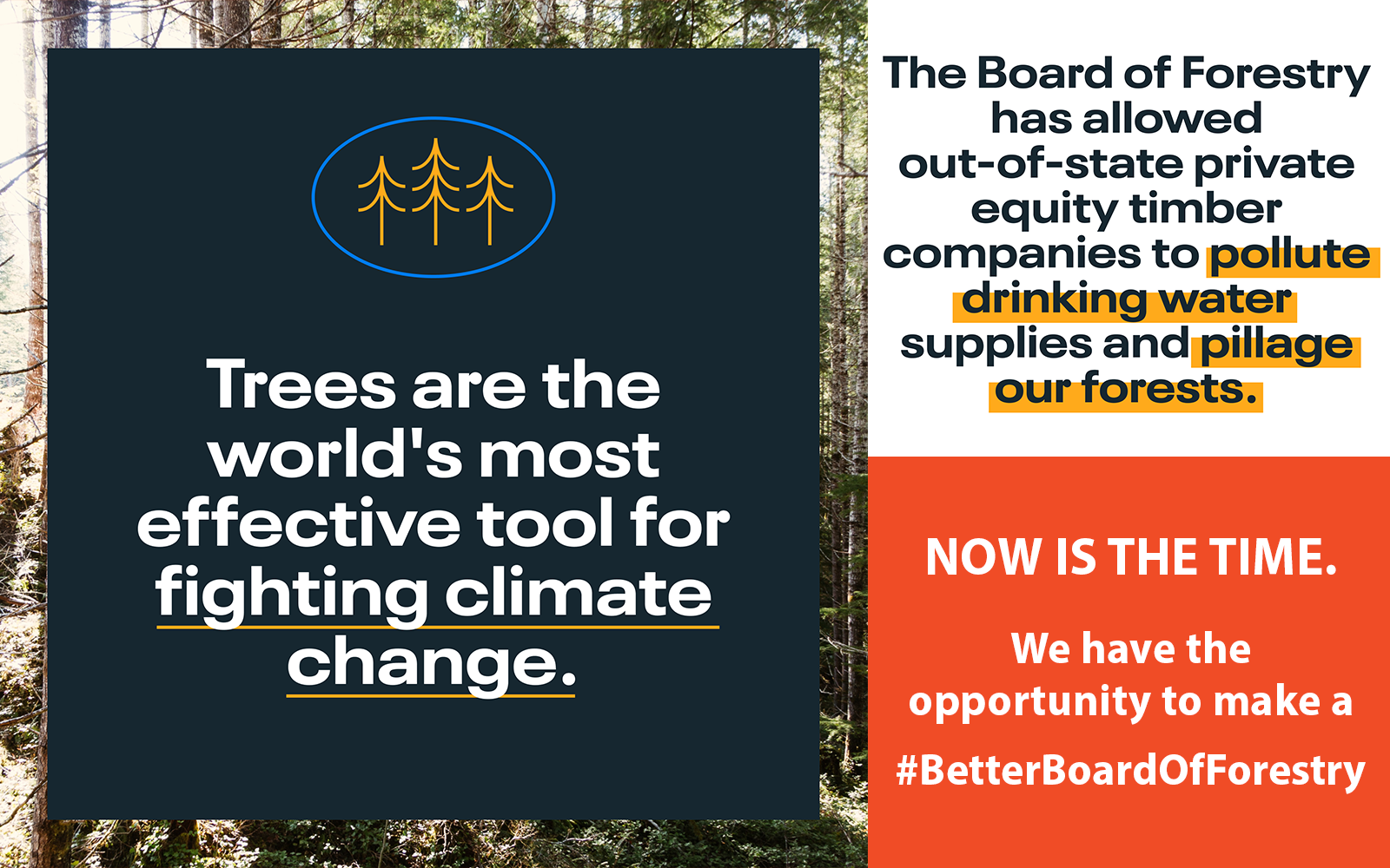Urge Your Senators to Make the Oregon Board of Forestry Better
