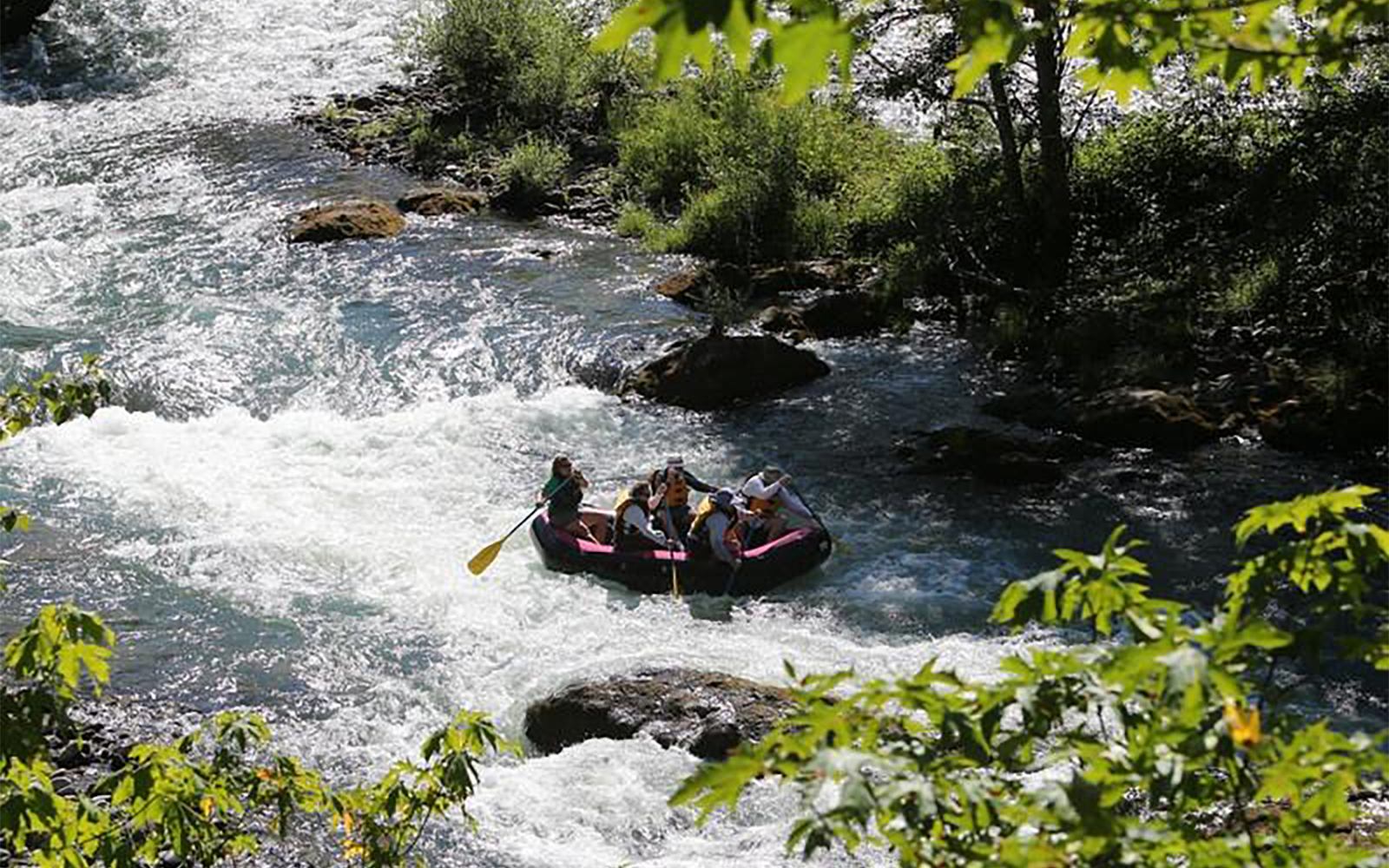 Hundreds of Businesses Across Oregon Urge Congress to Pass the River Democracy Act